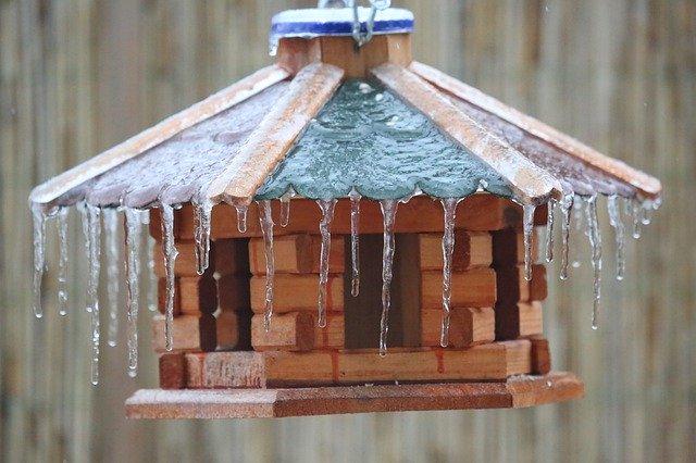 Vogelfutterhaus hängend