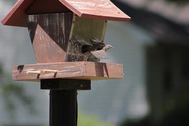 Vogelfutterhaus mit Silo