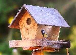 Vogelhaus mit Futter