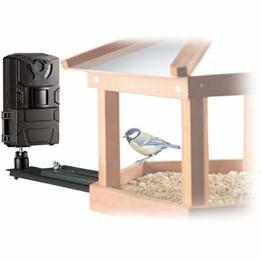 Bresser Vogel SFC-1 Überwachungskamera für heimische Vögel mit Bewegungssensor